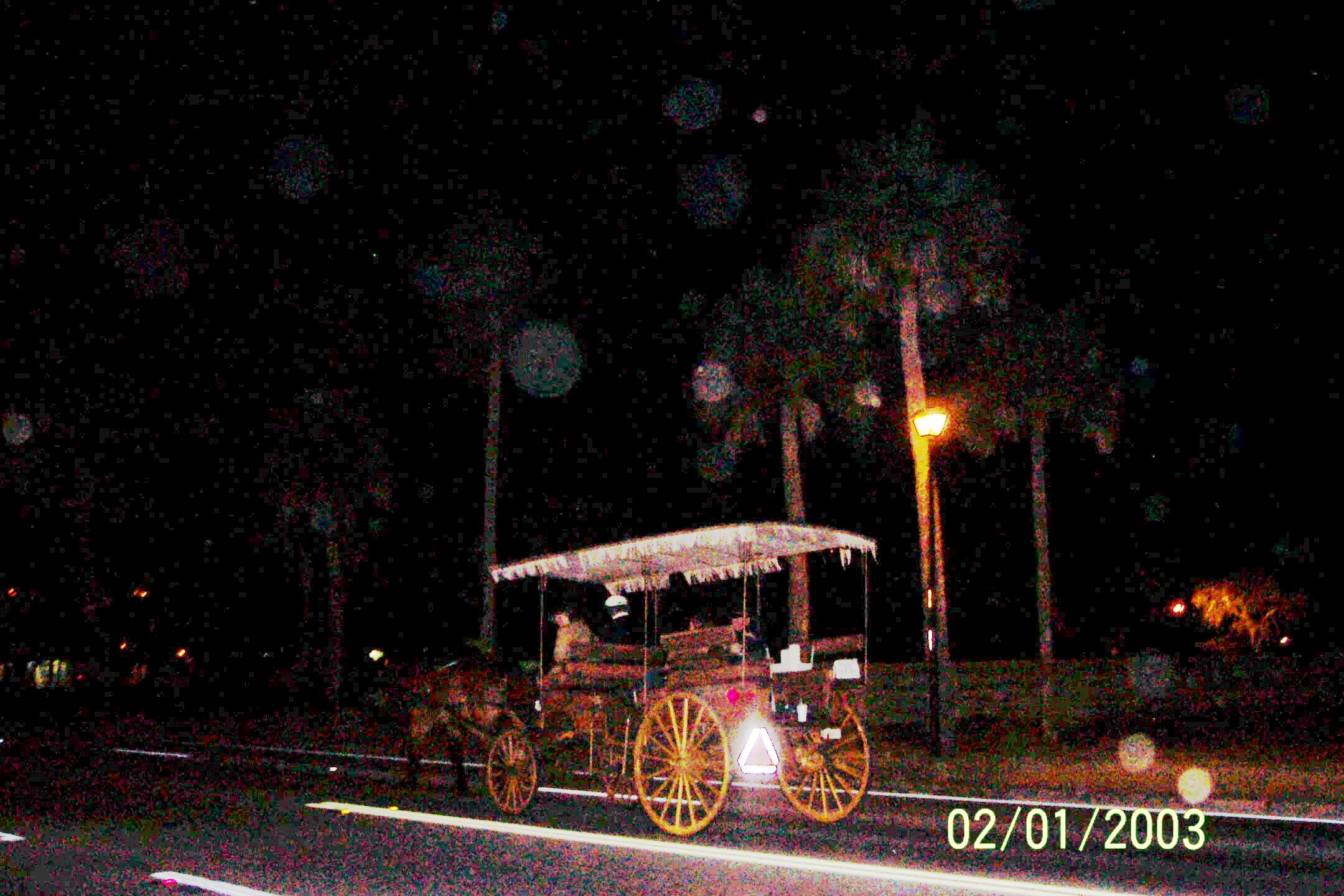 100_1787carriage.jpg